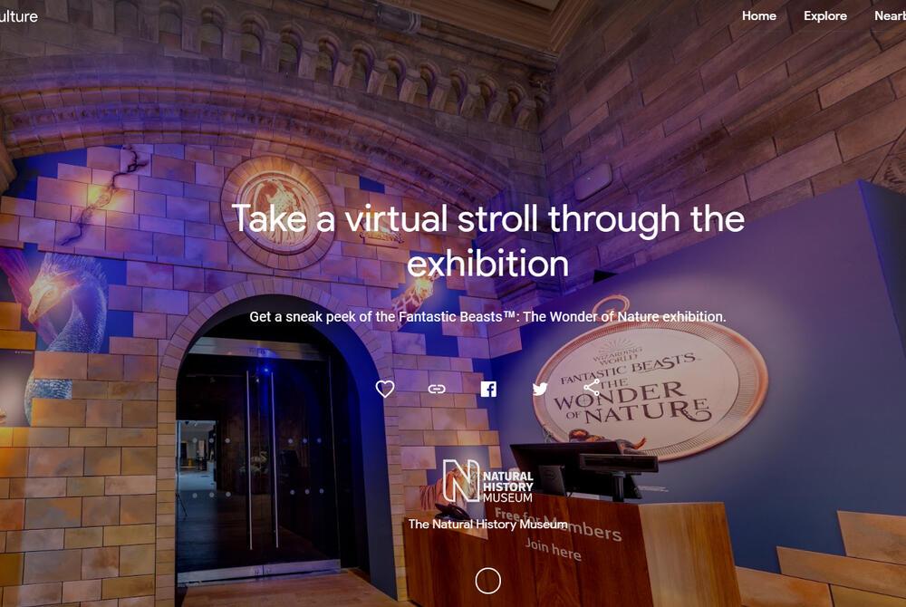 """Faites une visite virtuelle de l'exposition """"Les Animaux fantastiques""""!"""