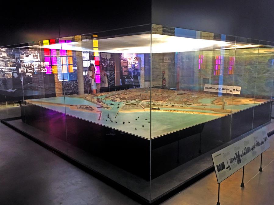 Large display case